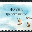 Serbia Birds 2010 strip of four stamps + label, mnh