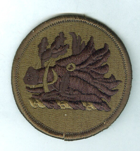 Georgia Army National Guard HQ subdued color embroidered patch mint