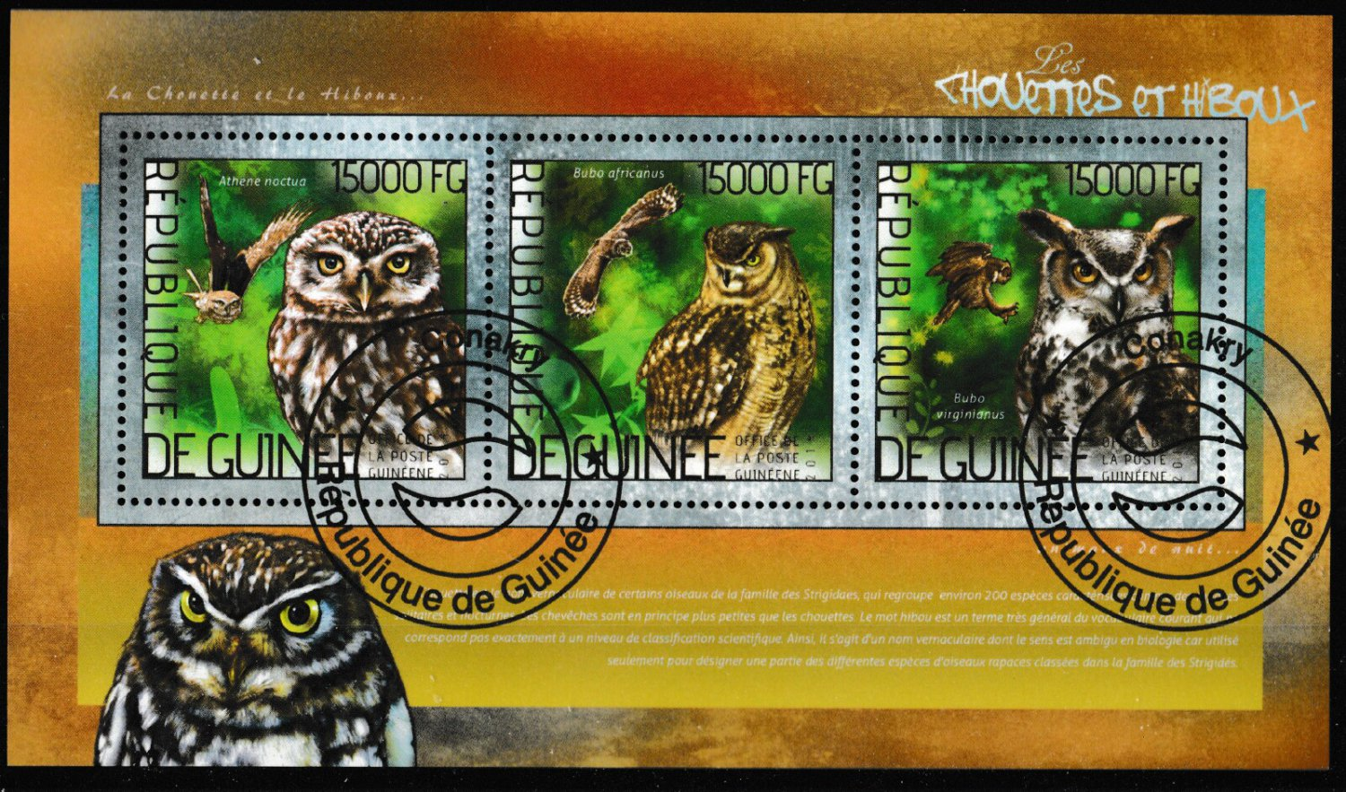 Owls mini sheet of 3 cto stamps 2014 Republic of Guinea
