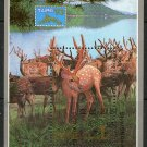 Deer CTO Souvenir Sheet Taipei '93 Philatelic Exhibition N Korea #3264