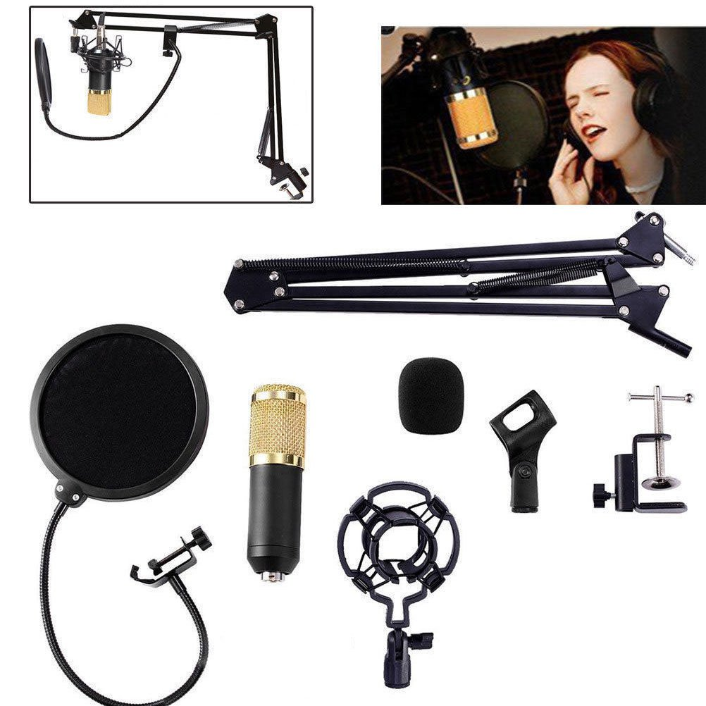 Studio Recording Condenser Microphone with Mic Suspension Arm Stand Shock Mount