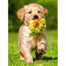 puppy dog with flower Diamond Painting DIY kit Canvas Painting Wall Art Mosaic Painting
