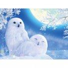 snowy owls Diamond Painting DIY kit Canvas Painting Wall Art Mosaic Painting