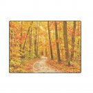 "Autum Forest 'One Layer' Fleece Blanket (Large) 58""x80"""