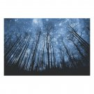 Forest Starry Night Sky Wooden Photo Puzzle (1000 Pieces)