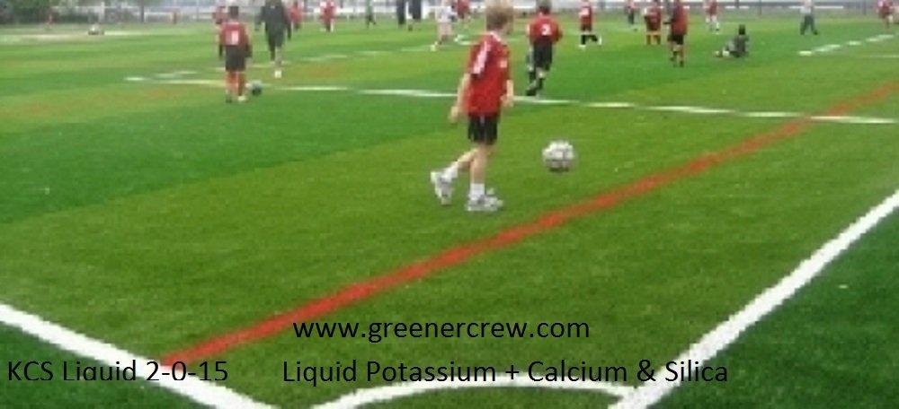 KCS Liquid 2-0-15 Liquid Potassium + Calcium & Silica