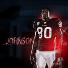 Andre Johnson American Football Houston Texas 24x18 Print POSTER