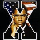 Malcolm X Denzel Washington Movie 24x18 Print Poster