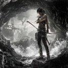 Tomb Raider 2013 Video Game Art 24x18 Print Poster