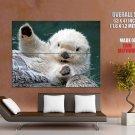 White Wet Otter Cute Animal Huge Giant Print Poster