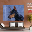 Dog Doberman Animal Huge Giant Print Poster