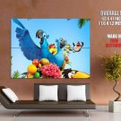 Rio Parrots Animation Movie Huge Giant Print Poster