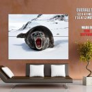 Elephant Seal Animal National Geographic HUGE GIANT Print Poster