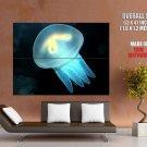 Medusa Jellyfish Underwater Ocean Nature HUGE GIANT Print Poster