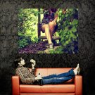 Girl Sexy Legs Sneakers Nature Huge 47x35 Print POSTER