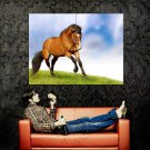 Horse Gallop Wild Nature Animal Huge 47x35 Print Poster