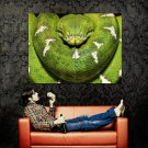 Python Green Snake Wild Nature Animal Huge 47x35 Print Poster