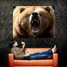 Grizzly Bear Roar Wild Nature Animal Huge 47x35 Print Poster