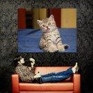Funny Kitten Cute Cat Tongue Animal Huge 47x35 Print Poster