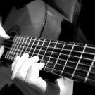 Guitar Playing Music Macro BW Art 32x24 Print POSTER