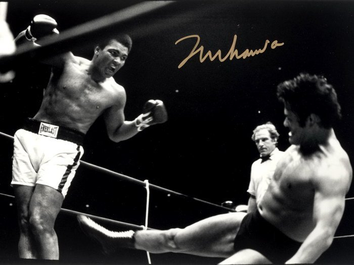 Float Like A Butterfly Sting Like A Bee Muhammad Ali BW 32x24 POSTER