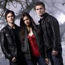 Vampire Diaries Dobrev Wesley Somerhalder 32x24 Print POSTER