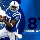 Reggie Wayne Indianapolis Colts NFL 32x24 Print Poster