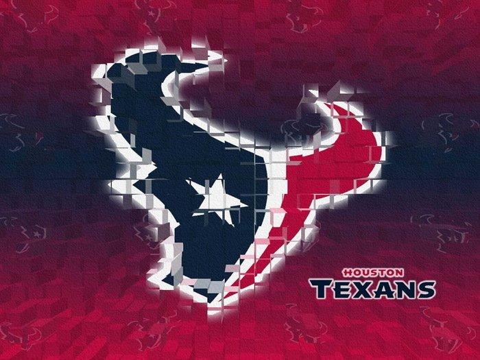 Houston Texans Logo Football NFL 32x24 Print Poster