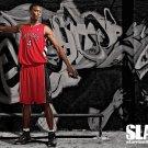 Chris Bosh Toronto Raptors NBA 32x24 Print Poster