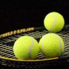 Tennis Racket Balls Sport 32x24 Print Poster