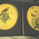"VINTAGE SET OF TWO FRAMED BIRD/FLORAL PICTURES-WOODEN FRAMES...10 1/2""X12 1/2"""