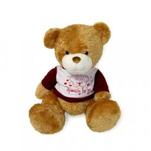 Teddy Bear7
