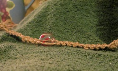 Macrame Bracelet w/Clear Bead (MJ011)