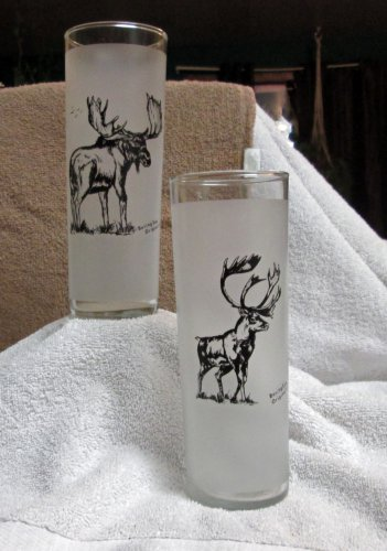 Tall Glasses With Elk and Moose (EG007)