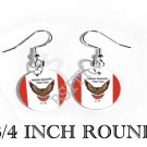 Alabama-Quassarte INDIAN Flag FISH HOOK CHARM Earrings