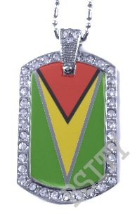 GUYANA GUYANESE FLAG Iced Out CZ BLING Charm Dog Tag
