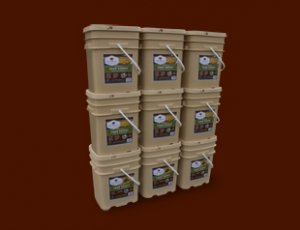 1080 serving package