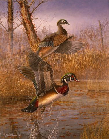Fall Woodies Rising - Item PP120