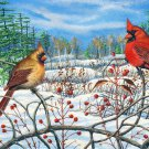 Winter Berry - Cardinals Item CP149