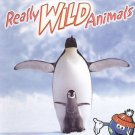 NATIONAL GEOGRAPHIC Really Wild Animals: Polar Prowl/Cool Cats (DVD, 2007) NEW