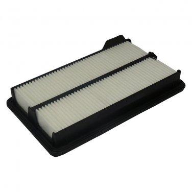 Ecogard XA6306 Air Filter