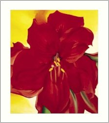Georgia O'Keeffe Amaryllis Needlepoint Design by Lena Lawson (ok-01)