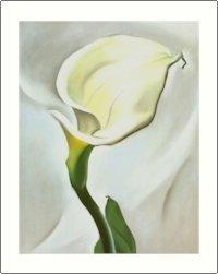 Georgia O'Keeffe Calla Lily Turned Away Needlepoint Design by Lena Lawson (ok-17)