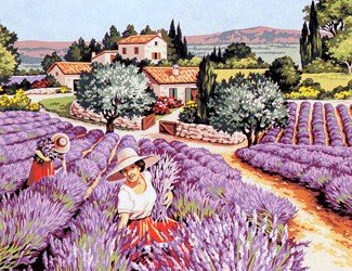 Needlepoint Canvas by SEG Senteurs provencales (seg-981-149)