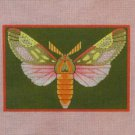 Needlepoint Canvas by Janet Watson Berthodia Moth  (fdp-JW-121)