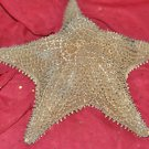 Giant Starfish Outdoor Garden Statue Sculpture