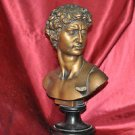 The David Scupture Bust Statue Made of Resin