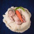 4Pcs/Set Baby Newborn Pillow Basket Filler Wheat Donut Photography Props