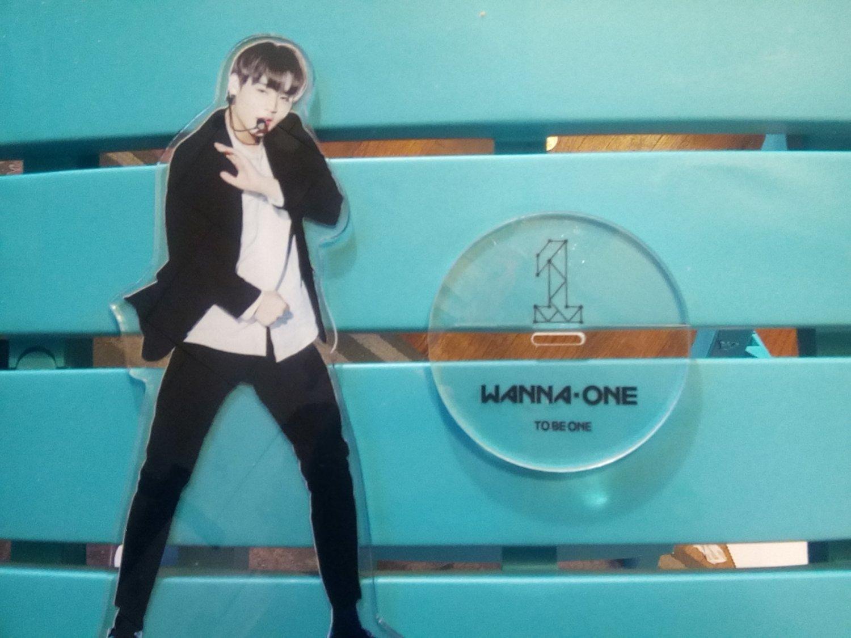 Wanna One (Kpop) Acrylic Figure
