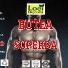 Organic Butea superba - Red Kwao Krua - 600mg x 60 Veg Capsules Sexual Health